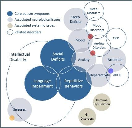 Autism Spectrum Disorder Linked To >> Help For Kids With Autism In Draper Ut Functionabilities